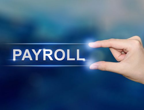 Single touch payroll exemption for directors and family members