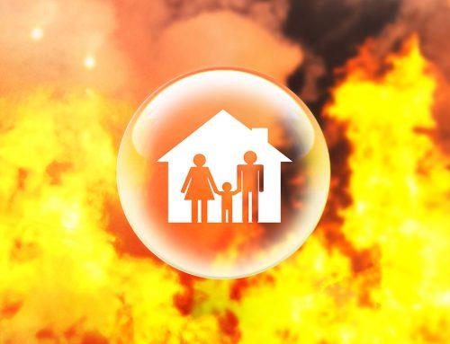 Small Business Bushfire Support Grant